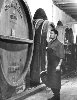 Der alte Winzerkeller