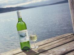 Ein Gläschen Müller-Thurgau am See