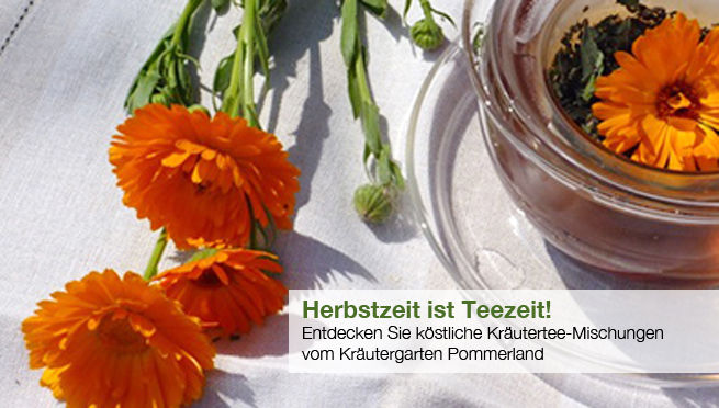 Herbstzeit ist Teezeit mit Bio-Tees vom Kräutergarten Pommerland